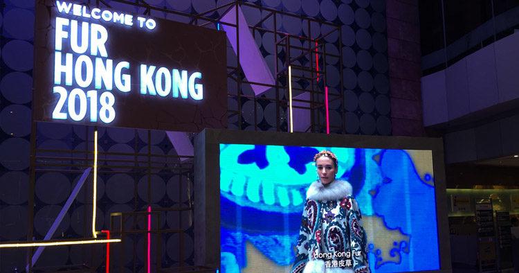 """Mersmann auf der """"Fur Hong Kong 2018"""""""